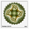 fractal walls360_walldecal